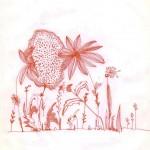 Fiori , inchiostro rosso_red ink